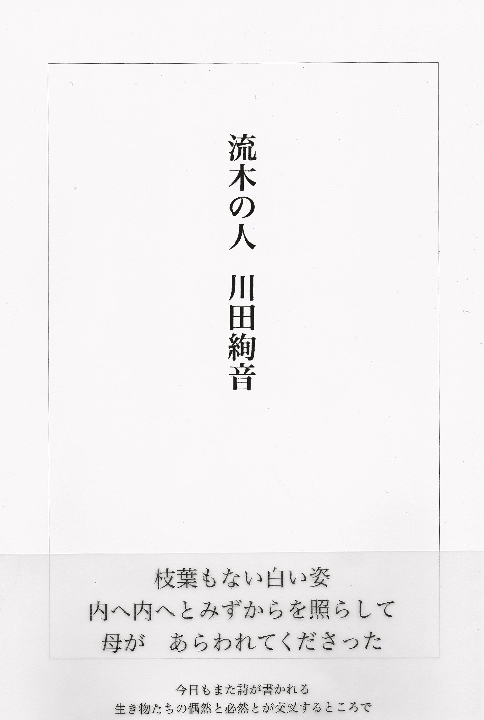 IMG_kawata.jpg